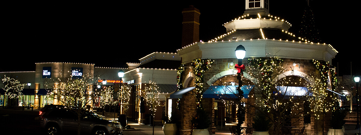 Zionsville Christmas Lighting Services