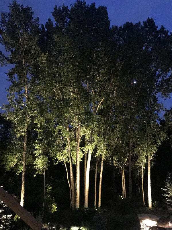 Zionsville Landscape Lighting
