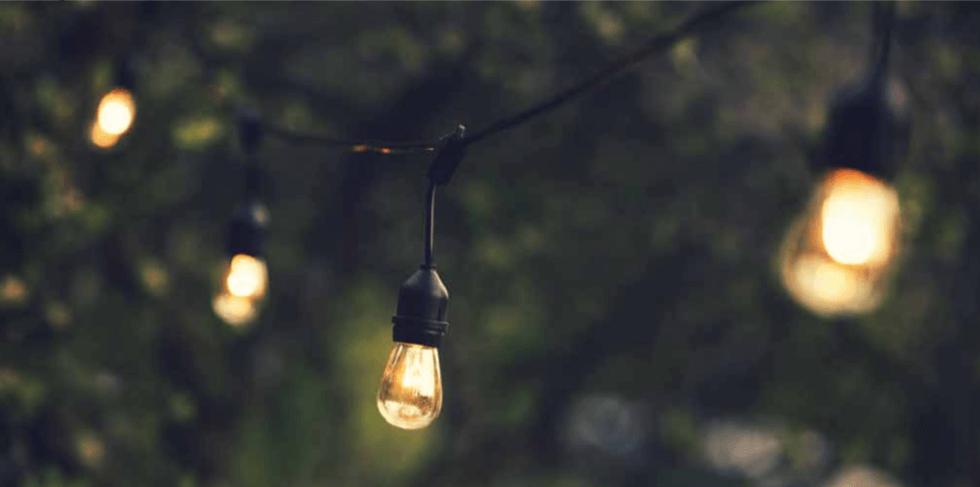 Zionsville Landscape Lighting